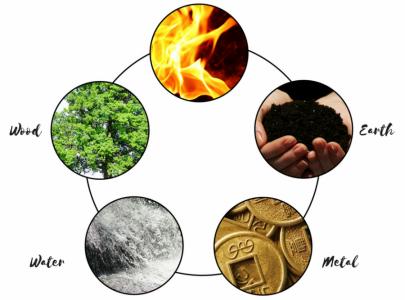 Эрүүл амьдралын үндэс – 5 махбодын талаар